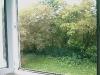 Blick aus der Küche zum Hinterhof (2)